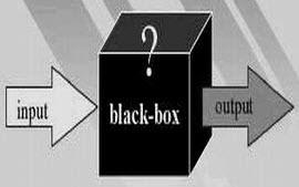 accounting black box