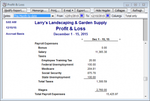 detailed profit & loss payroll expenses