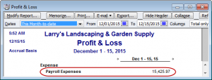 profit & loss payroll expenses
