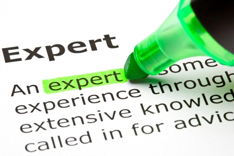 definition of an expert
